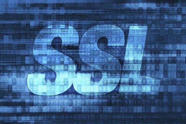 Bay Area SSL Website Company